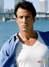 PHOTO L'EXPERT - SYLVESTER STALLONE /11X15 CM #15