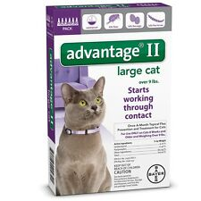 6 MONTH Advantage II Flea Control Large Cat for cats over 9 lbs PURPLE