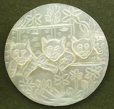 Lg Sz Bethlehem Pearl Button 4 Cats on the Wall w Flowers Nice! 1 & 5/8 inch