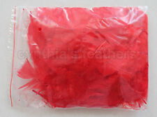 "10g (0.35Oz) Bright Red 3~4"" Turkey Plumage Feathers for crafting, 80~120 counts"