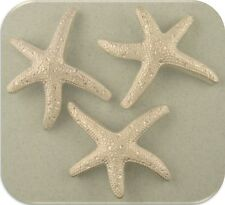 2 Hole Beads Starfish ~ Ocean Life Animal Beach Aquatic ~ Silver Sliders QTY 3