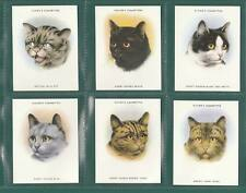 CATS - IMPERIAL PUBLISHING LTD - SET OF L24 PLAYER'S ' CATS ' CARDS  -  1997