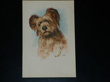 CARTE POSTALE - CHIEN DE BERGER - Illustr F.B