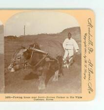B1732 Keystone 14081 Farmer In His White Costume Plowing Near Seoul Korea D