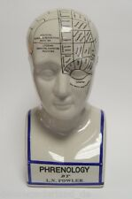 Porcelain Figure Bust Phrenology Head Medicine Skull Teaching H30cm