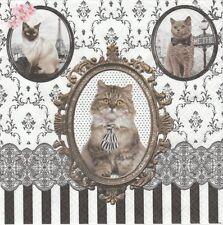 2 Serviettes en papier Chat Baroque - Paper Napkins Barocco Cats