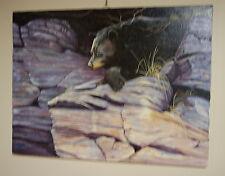 Sam Bailey 18x24 Oil Painting of Black Bear in Snow 1987