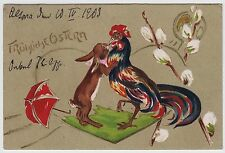 POSTCARD - unusual 1903 easter greeting, rabbit fights red & black rooster