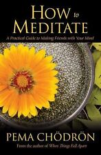 How to Meditate : A Practical Guide to Making Friends with Your Mind by Pema...