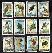 Paradise Birds Kohler Swiss 1920 Poster Stamp Card Set Exotic Oiseaux Vogel