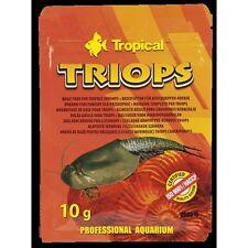 Triops tadpole shrimps sachet 10g