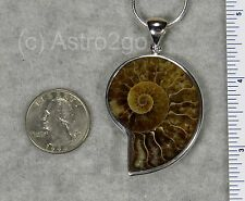 AMMONITE PENDANT $89 Sterling Silver Fossil Jewelry by STARBORN CREATIONS NEW!
