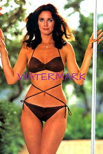 "Lynda Carter 4""X6"" teeny bikini busty picture 4""X6"" photo portrait b"