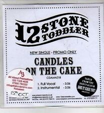 (CI282) 12 Stone Toddler, Candles On The Cake - 2007 DJ CD