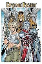 Divine Right Book 1: Adventures of Max Faraday by Scott Williams & Jim Lee TPB
