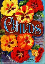 1897 Child's Rare Vintage Flowers Seed Packet Catalogue Advertisement Poster