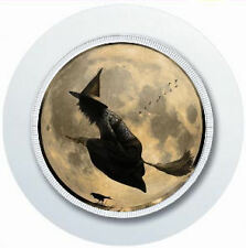 GOTHIC WITCH CAR TAX DISC HOLDER REUSABLE