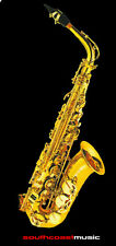 FONTAINE ALTO SAXOPHONE OUTFIT WITH HARD CASE AND REED