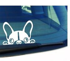French Bulldog Frenchie Lovers New Quality Car Sticker Decal White Vinyl