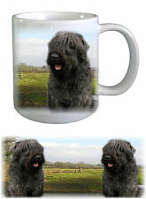 Bouvier des Flandres Dog Ceramic Mug by paws2print
