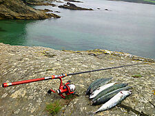 CANNA DA PESCA GONFIABILE KAYAK CANOA GONFIABILE canna da pesca Superlight superleggero