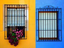 WINDOW FLOWERS YELLOW BLUE PHOTO ART PRINT POSTER PICTURE BMP163A