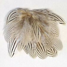 SILVER PHEASANT BODY PLUMAGE FEATHERS 1 GRAM - art, craft, millinery, natural