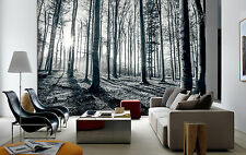 Wall mural photo wallpaper 366x253cm Black & white forest bedroom & living room
