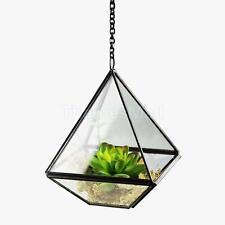 Diamond-Shape Glass Terrarium Pot Succulent Greenhouse Plant Container 10cm