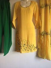 Salwar Kameez Shalwar saree Indian Bollywood Fancy Dress Costume (S) UK 8