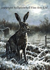 Wildlife, Hare Christmas cards pack of 10 by Mick Cawston C347x Moonstruck