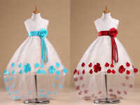 Princess Flower Girls Bridesmaids Wedding Tulle Fancy Gown Formal Dress Up