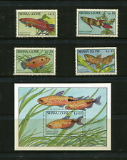 Sierra Leone  1988  #959-63  fish marine   set &  sheet   MNH  F987