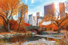 CENTRAL PARK IN AUTUMN POSTER (61x91cm) NEW YORK NEW LICENSED ART