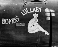 1,600+ page B-24 Liberator: Over 500 Photos, Stories And Chronology Book on CD