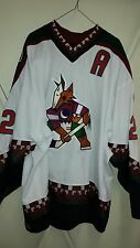 PHOENIX COYOTES Claude Lemieux game-worn 2002-03 home jersey w/A + wear team LOA