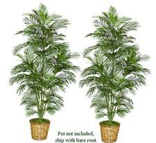 Two 7'Areca Artificial Palm Trees Silk Plants New 117