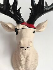 SMALL Unique decoration Stag Head Taxidermy Deer 'PIRATE'