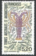 FSAT/TAAF 1997 Spiny Lobster/Marine/Nature/Wildlife 1v (n23211)