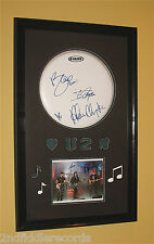 U2-Autographed 23 x 38 Drumhead & Photograph Framed Display with COA-BONO