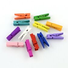 50 Mini Wooden Craft 25mm Multi Coloured Pegs Clips Photo Hanging (BOX44)