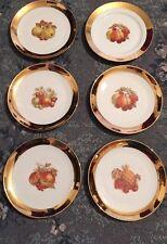 Hermoso Conjunto De 6 placas de 20Cm con diseño de fruta bávaro