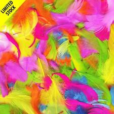 20g Bag of Assorted Bright Coloured Feathers Easter Craft Bonnet Hat Decor Nest