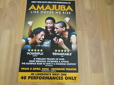 AMAJUBA Like Doves we Rise  South Africa Hit  CRITERION Theatre Original  Poster