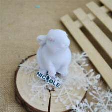 Rabbit Silicone Soap Molds Candle Moulds Handmade Resin Craft Flexible Mold