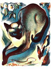 PAINTINGS ANIMAL CAT BUTTERFLY SIAMESE ART POSTER PRINT LV2997