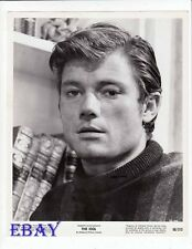 Michael Parks sexy hunk VINTAGE Photo The Idol