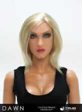 TRIAD TOYS DAWN FEMALE HEAD SCULPT FOR 1/6 SCALE FIGURES MINT IN PACKAGE VHTF