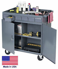 WORK STATION Mobile - Portable Steel Workbench Cabinet - 12 Compart / 12 Drawers