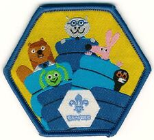Beavers Sleepover Scouts Fun Badge